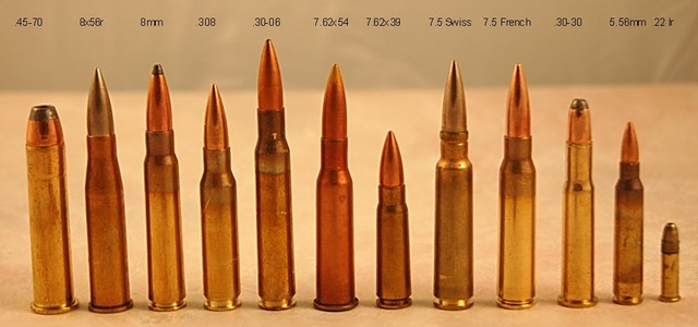 Ammo Cartridge Size Visual Comparison