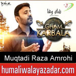 https://www.humaliwalyazadar.com/2018/09/muqtadi-raza-amrohi-nohay-2019.html