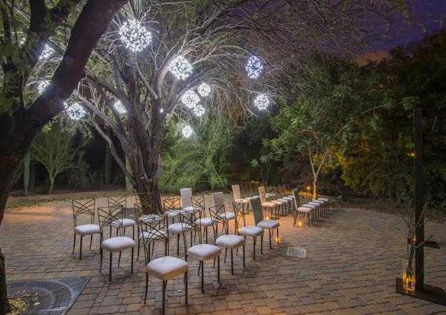 Best Phoenix Wedding Venues phoenix zoo
