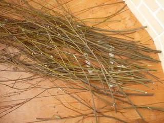 Подготовка ивовых прутьев к плетению