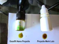 brazilian green propolis, cara mengobati asam urat