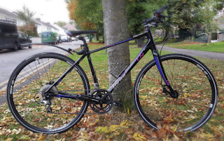 Stolen Bicycle - Giant Thrive Liv 1