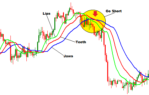 Do forex have long trends