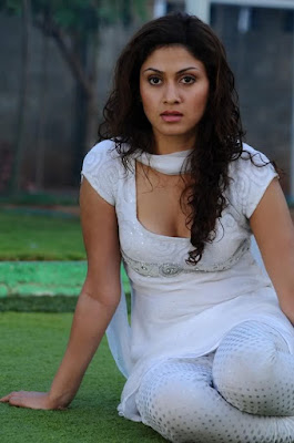 Telugu sexy actresses picture gallery