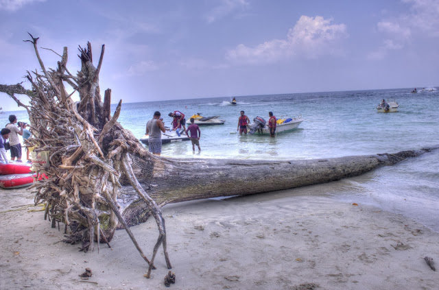 Top Beaches in India Havelock Island