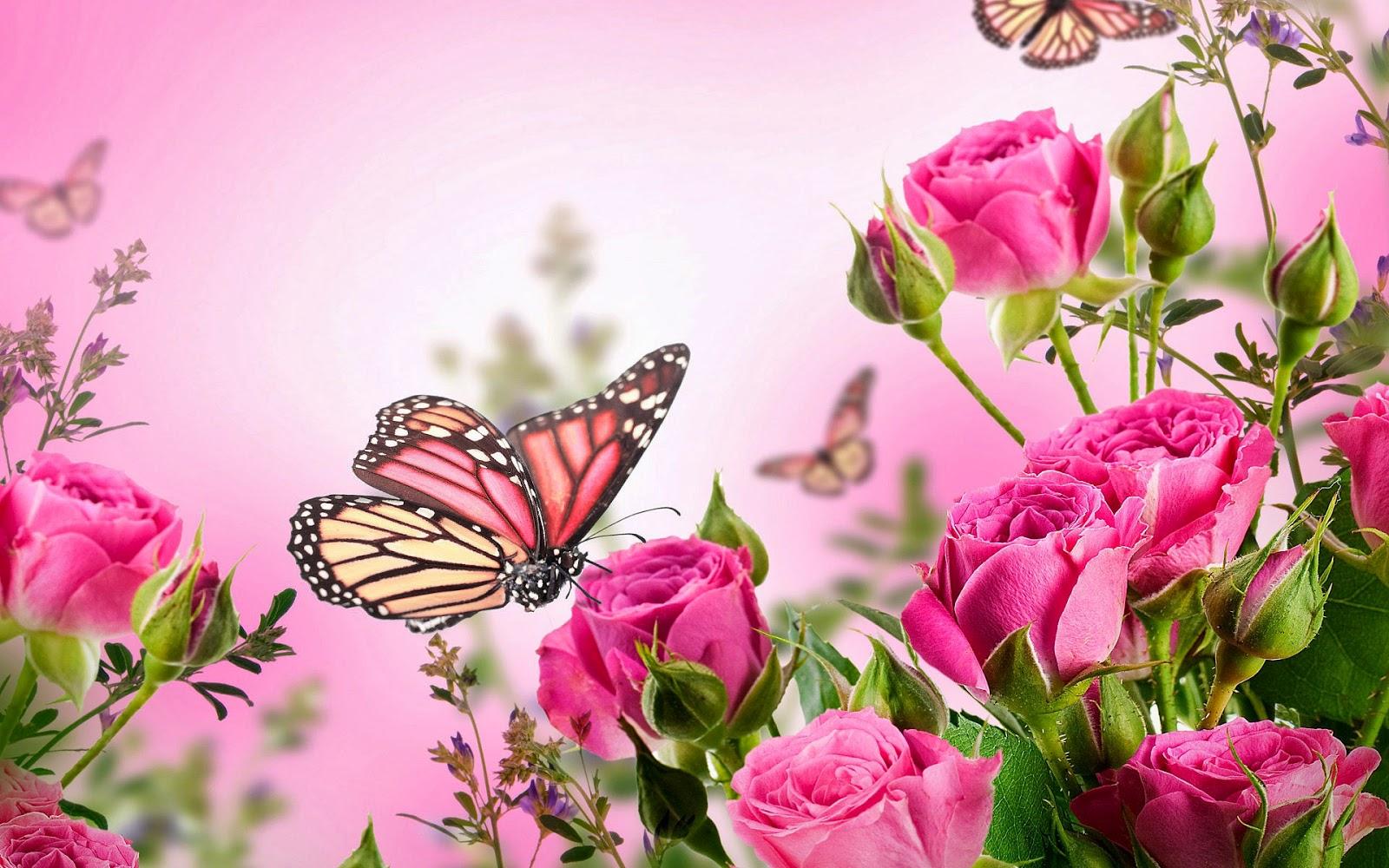 Foto met roze rozen en vlinders