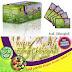 Avail Chlorophyll with Green Tea - Kaya Serat dan Anti Oksidan
