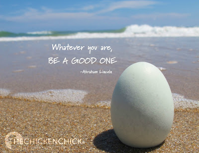 Whatever you are, be a good one. ~Abraham Lincoln