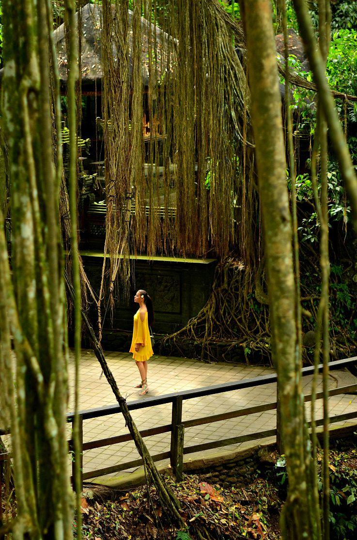Tamara Chloé, Tc Style Clues, Monkey forrest, Bali, Indonesia