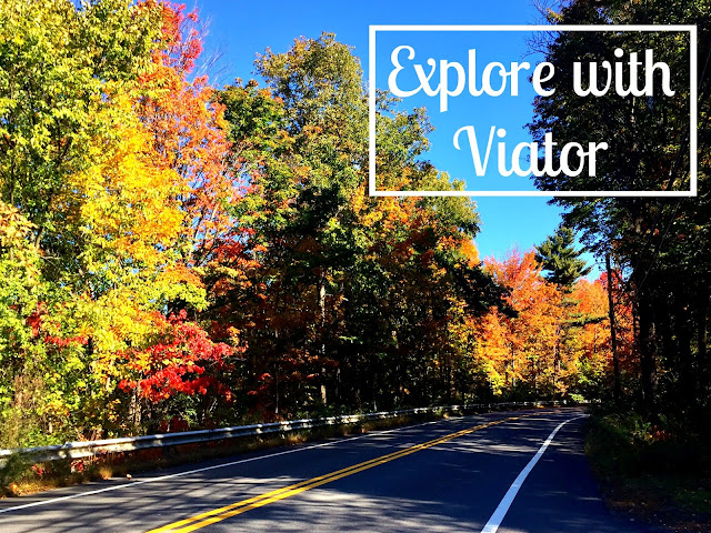 Explore with Viator