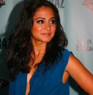 Parminder Nagra movies and tv shows, blacklist, hot, bend it like beckham, 2016, james stenson, instagram, wiki, biography, net worth, 2016, agents of shield, fortitude