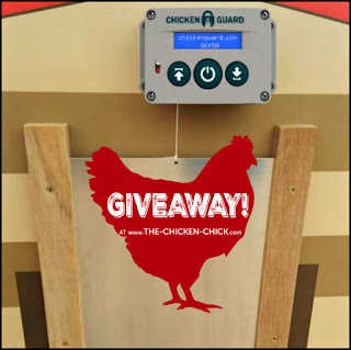 CHICKENGUARD automatic chicken door opener giveaway at www.The-Chicken-Chick.com