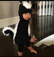 kostum binatang tupai