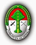 Pengumuman CPNS PEMKAB Ketapang formasi  Pengumuman CPNS Kabupaten Ketapang 2021