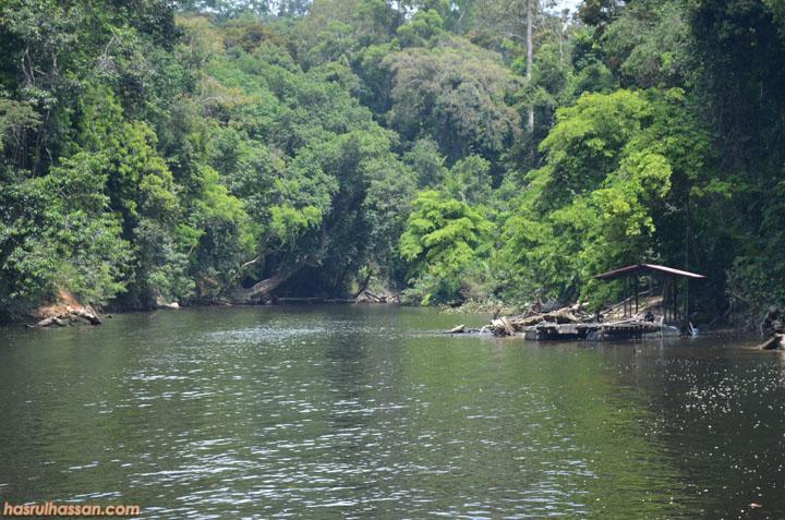 Lubuk memancing ikan Kelah, Taman Negara Pahang