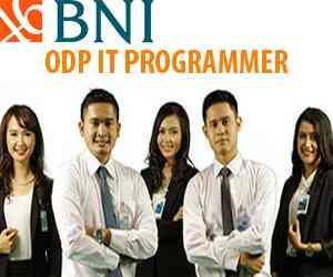 Lowongan Kerja IT Application Developer di Bank Negara Indonesia