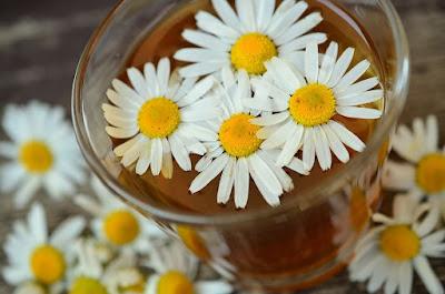 papatya çayı faydaları