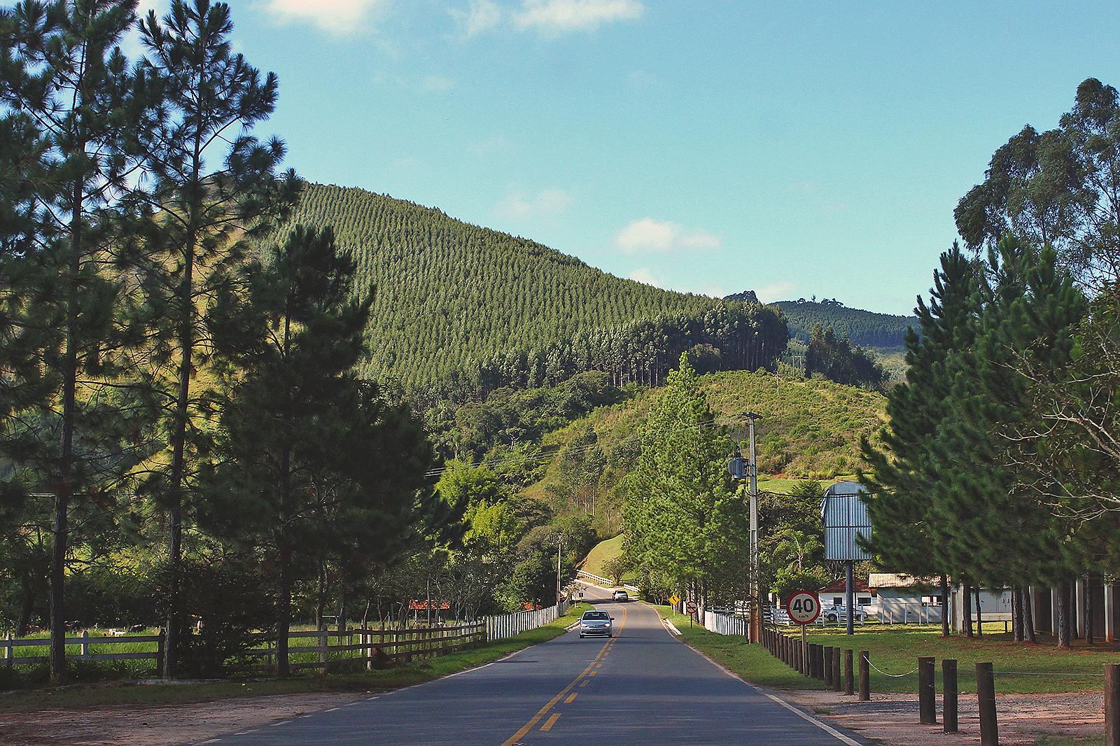 estrada minas gerais monte verde
