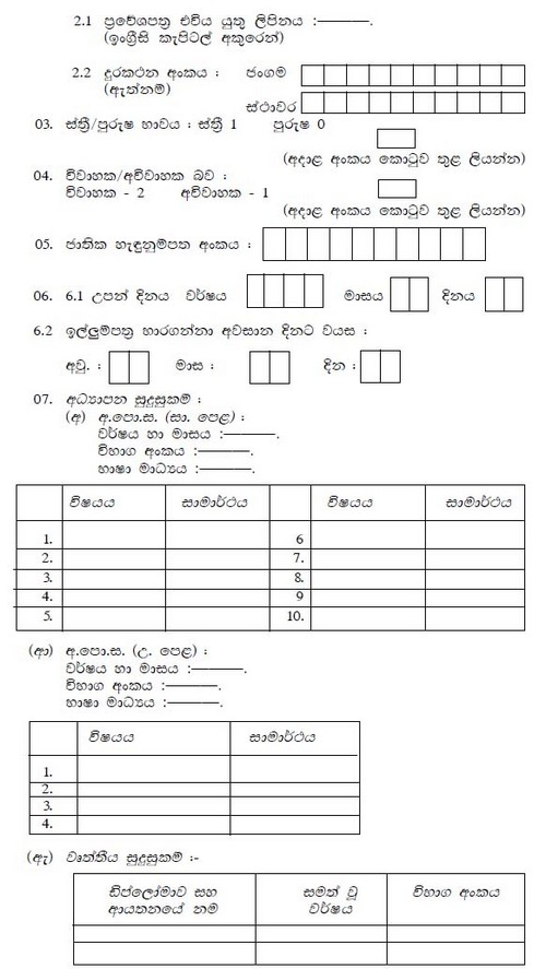 Job Application Form In Sinhala on free generic, big lots, blank generic, part time, sonic printable,