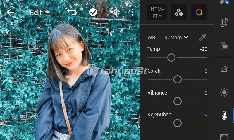 Cara Mengubah Warna Daun di Lightroom Android Menjadi Biru Muda