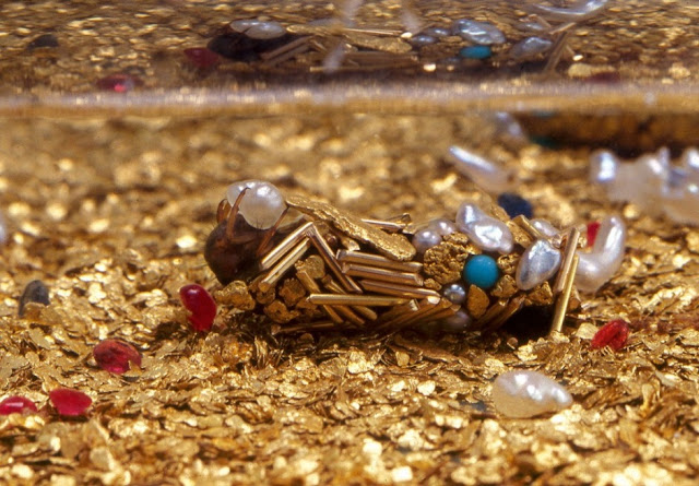 Ant and Termite Colonies Unearth Gold in Australia
