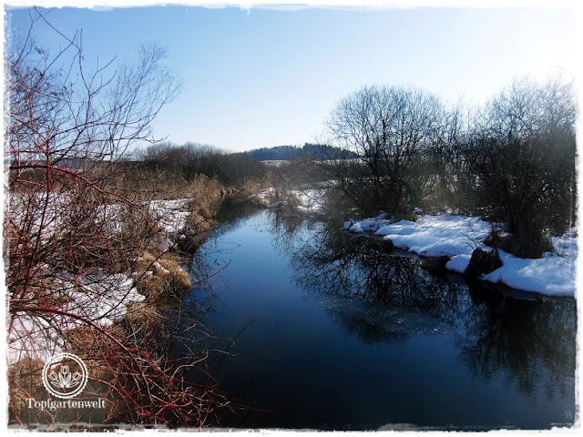 Gartenblog Topfgartenwelt Wallersee: Abfluss