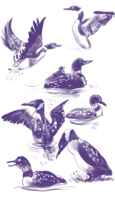 Loons bird drawing by Artmagenta