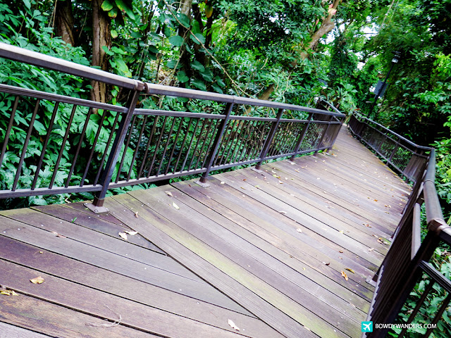 bowdywanders.com Singapore Travel Blog Philippines Photo :: Singapore :: 8 Best Park Places to Explore in Singapore This Year