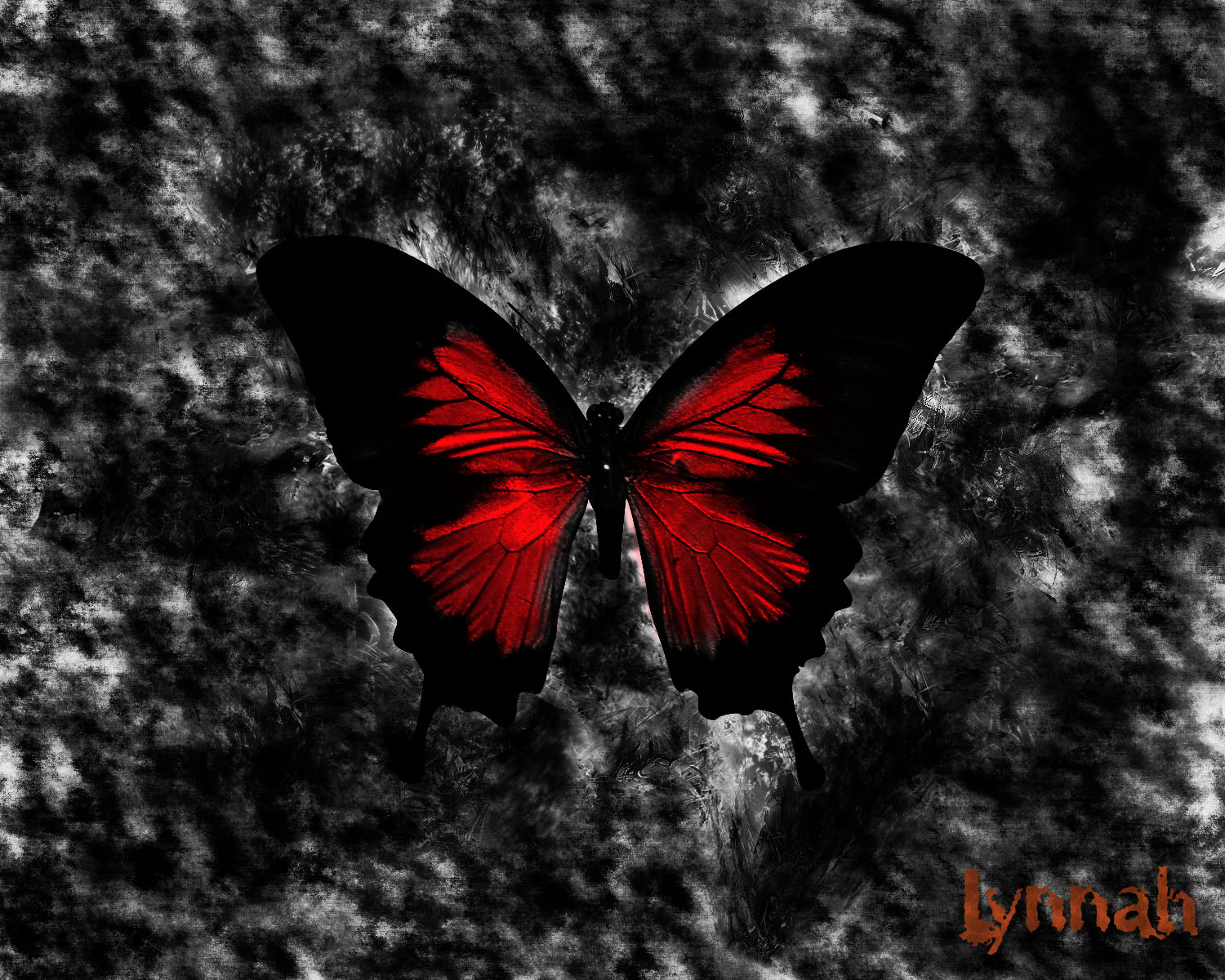 red butterfly wallpapers - photo #24