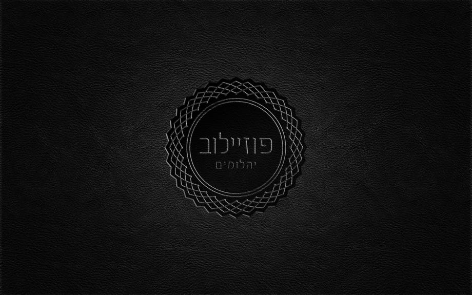 עיצוב לוגו, מעצב גרפי : רון ידלין