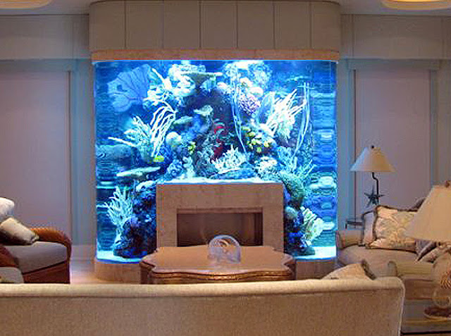 Unusual Places In Your Home For Fish Tanks