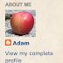 Make a custom Profile widget