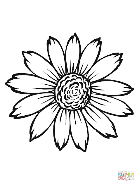Click The Flowering Head Of Sunflower Coloring Pages