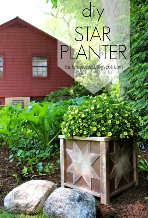diy star planter