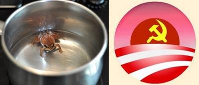 Boiling frog/Communist Obama