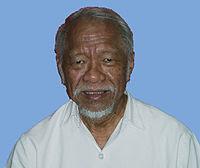 Prof. Dr. Samaun Samadikun