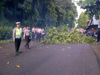 BREAKINGNEWS:Eksekusi Lahan Sampoddo, Lumpuhkan Aktifitas Warga