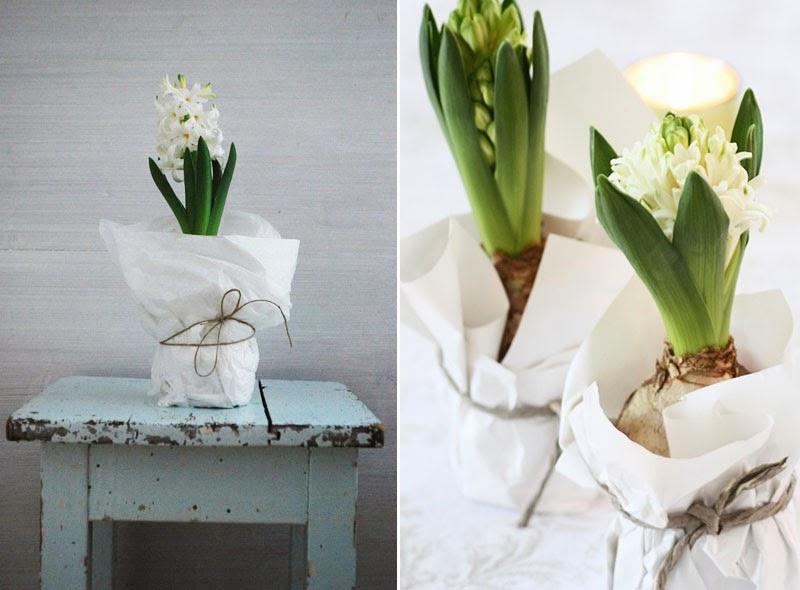 cómo decorar con bulbos