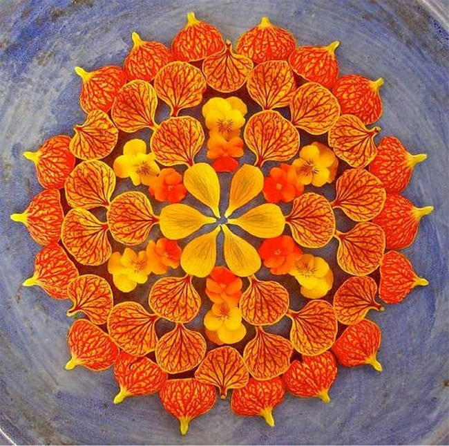 the artist creates colorful mandalas from flowers and plants