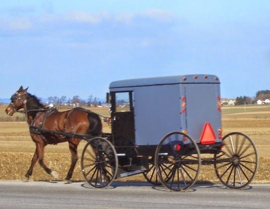 Lancaster Amish Buggy