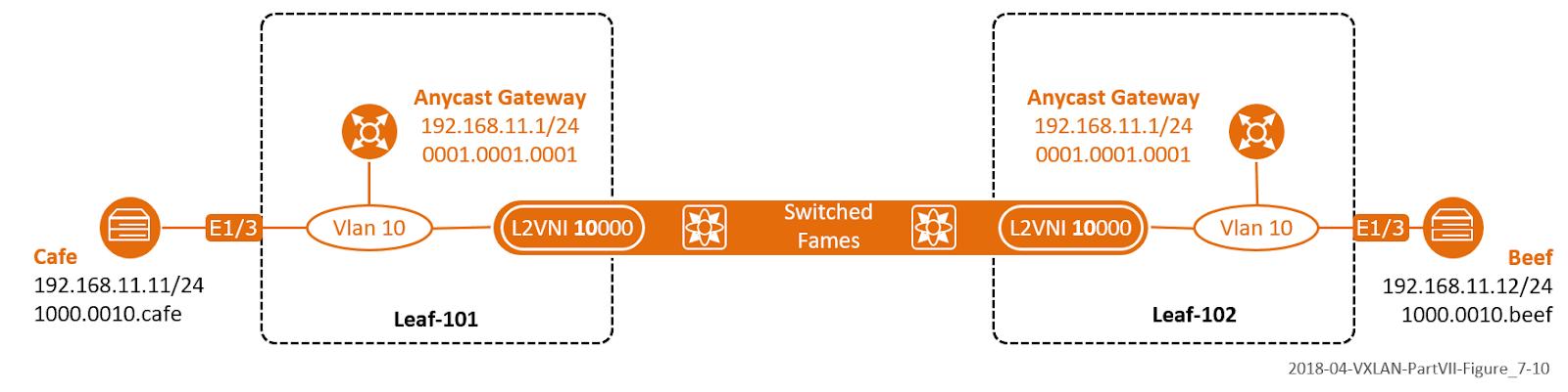The Network Times: VXLAN Part VII: VXLAN BGP EVPN –Control Plane