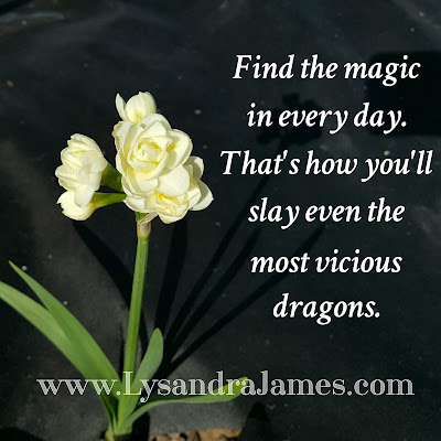 When Dragons Attack - www.LysandraJames.com