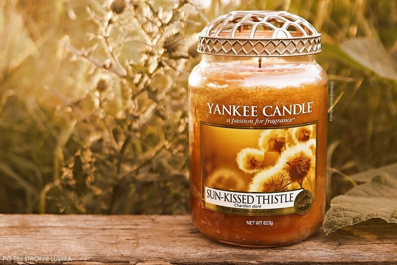 Yankee Candle Sun-Kissed Thistle