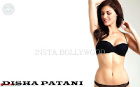 Disha Patani Exclusive sizzling beautiful Pics in bikini ~  Exclusive Galleries 029.jpg