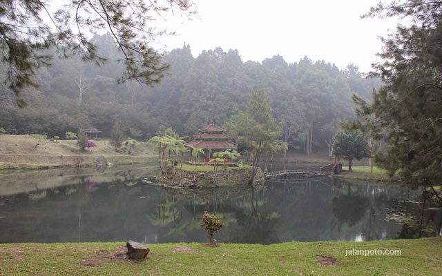 mandalawangi-camping-ground