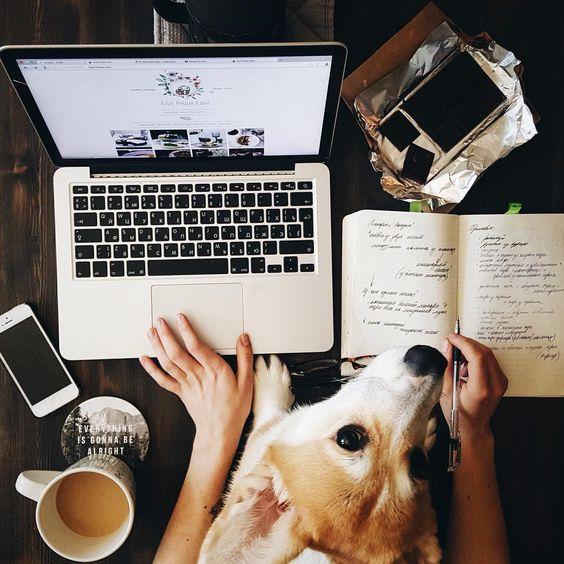 Inspiração: Fotos com seu cachorro ♥ #Dog