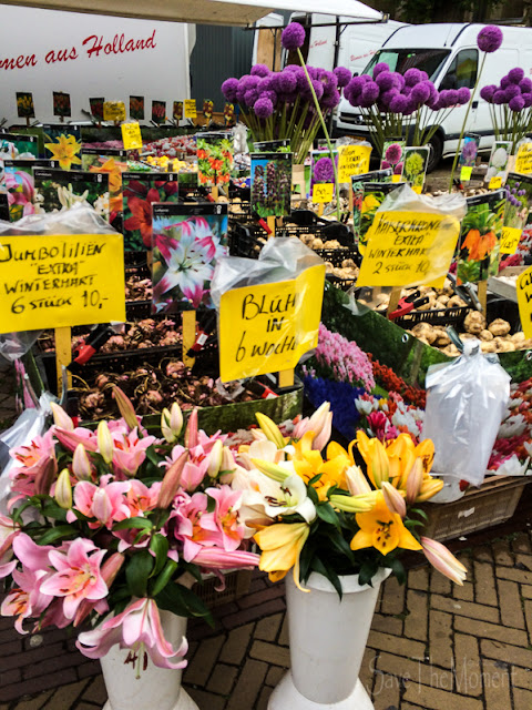 Blumenmarkt Alkmaar