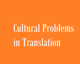 Cultural Problems in Translation and Brief Solutions