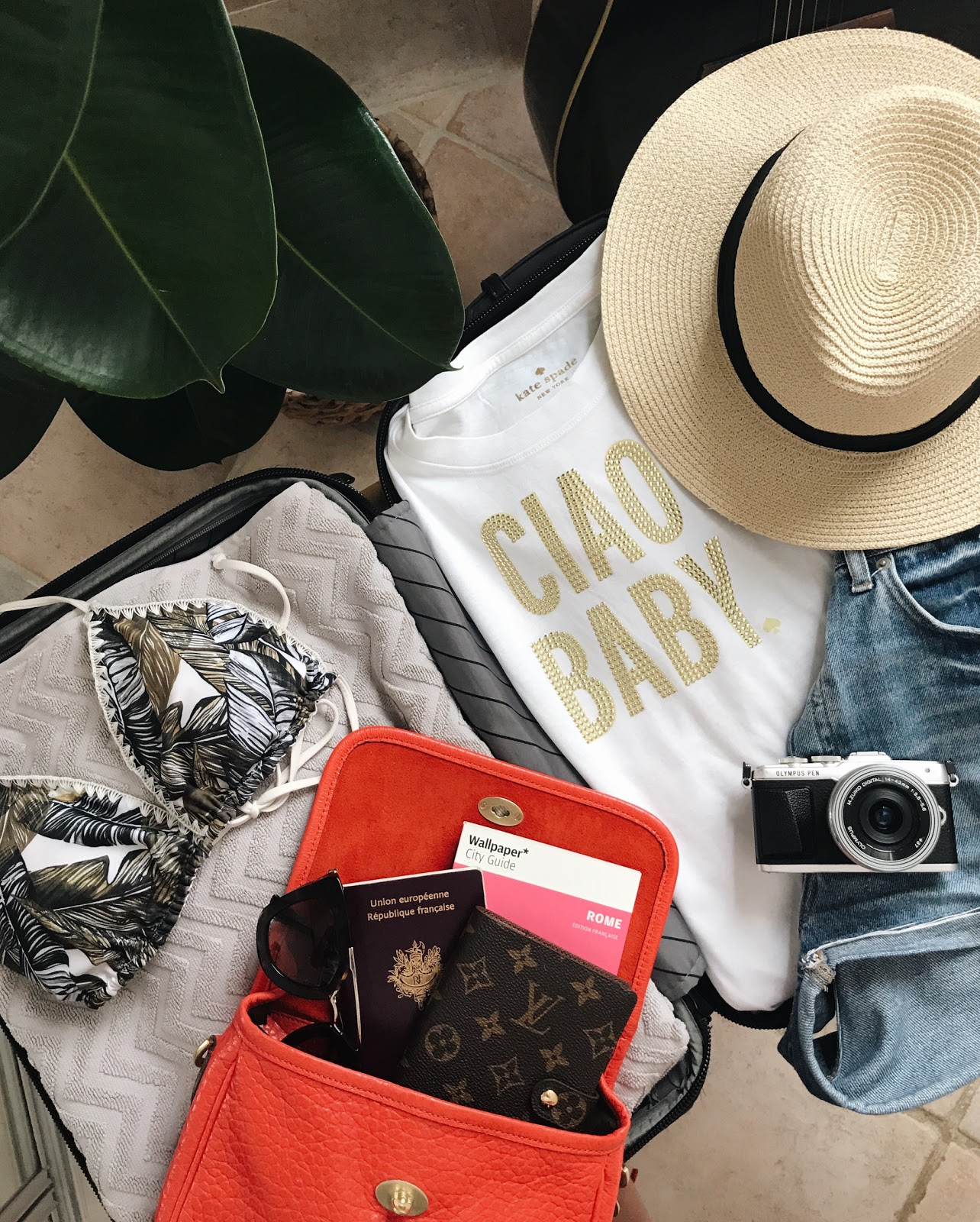 Travel Essentials + Tips & Tricks