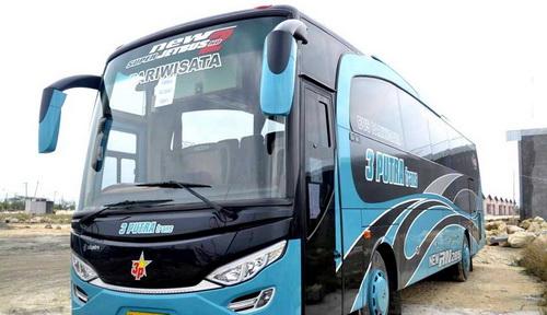 info sewa bus pariwisata surabaya
